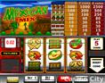 Mexican Mix Slot
