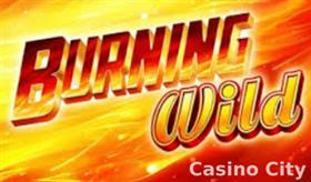 Burning Wild Slot