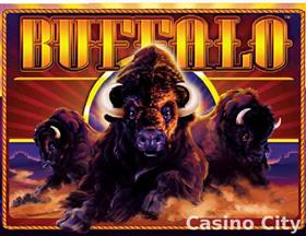 online casino games buffalo