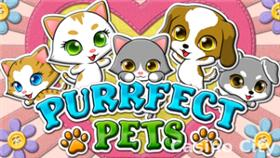 Purrfect Pets Slot