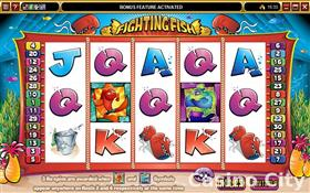 Fighting Fish Slot