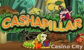 Cashapillar betway betting sports betting chat rooms
