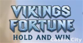 Vikings Fortune: Hold and Win Slot