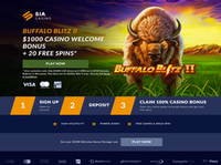 Sports Interaction Casino & Games