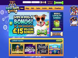 Play Lucky Puppy Bingo Now