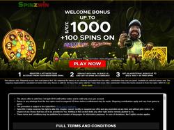 Play SpinzWin Casino Now