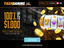 Play Tiger Gaming Now