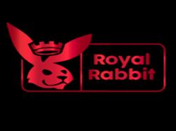 Play Royal Rabbit Now