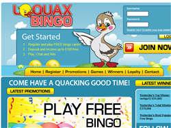 Play Loquax Bingo Now