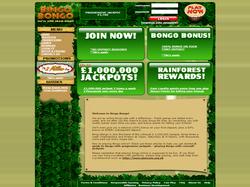 Play Bingo Bongo Now