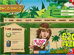 Play Congo Bingo Now