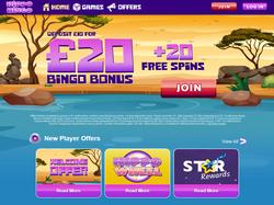 Play Hippo Bingo Now